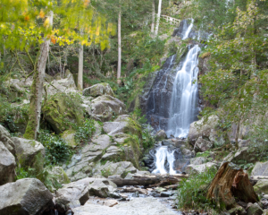 Tendon Waterfall in the Vosges