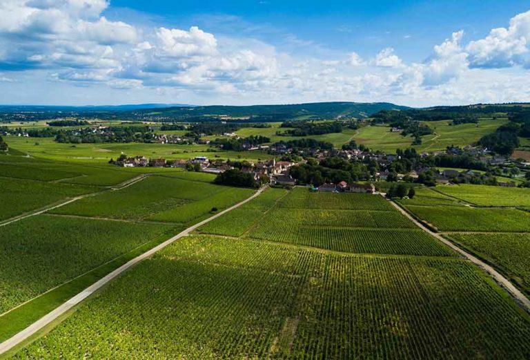 Vignoble de Mercurey en Bourgogne