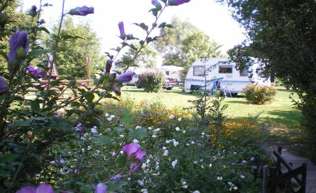 Camping Bourgogne Saint Boil