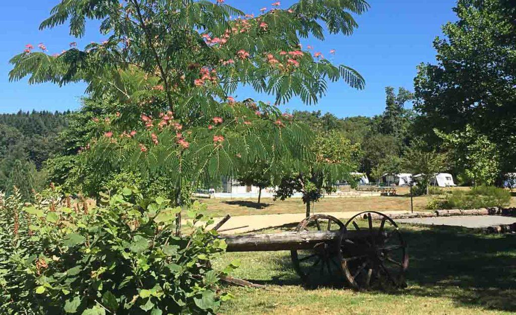Camping Naturiste Bourgogne
