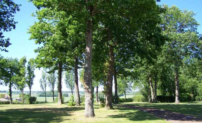 camping du Parc en Charente-Maritime